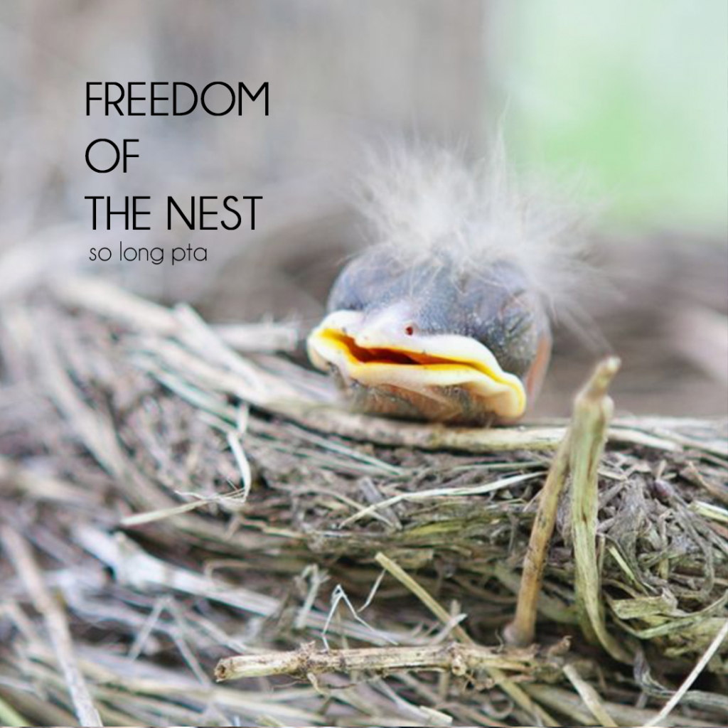 SoLongPTA Empty Nest Blog